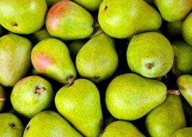 Fruitteler in het gelijk gesteld; manager handelaar was niet vertegenwoordigingsbevoegd